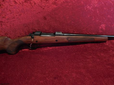Cz 550 Ultimate Hunting Rifle Review