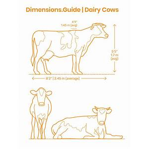 Dairy farming guide by momekh just add venture instruction