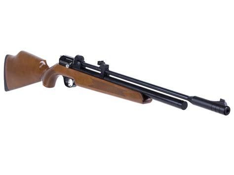 Dana Chasen Air Rifle