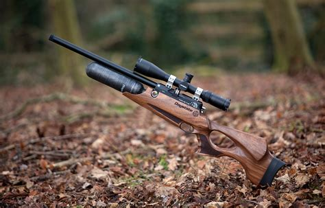Daystate Air Rifles Review