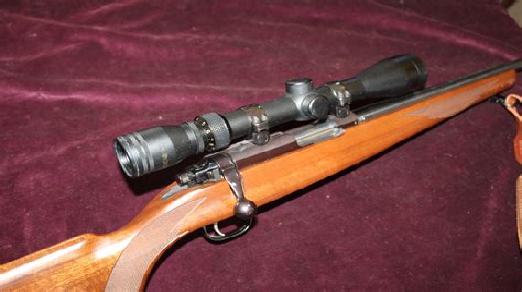 Dayz Bolt Action Rifle