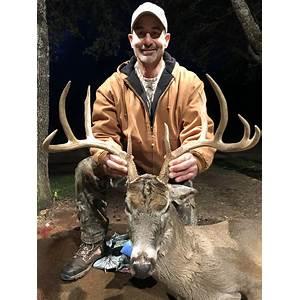 Deer hunting tips whitetail deer hunting mule deer hunting main specials