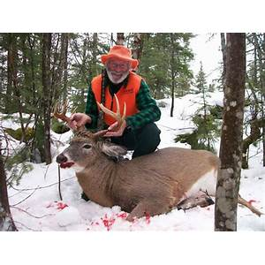 Best reviews of deer hunting tips whitetail deer hunting mule deer hunting main