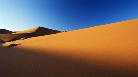 Desert-Eagle Desert Eagle Powerpoint Theme.