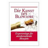 Die kunst des blow jobs expertentipps f does it work?