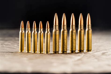 Difference Of 223 Cal Ammo
