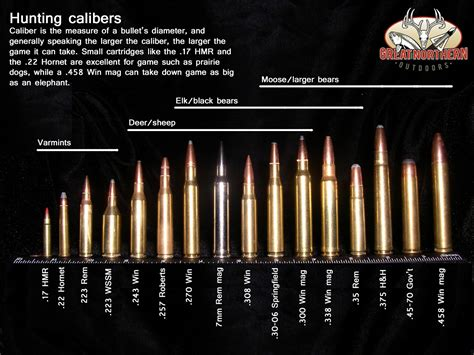 Different Ammo Sizes 223 And 5 56