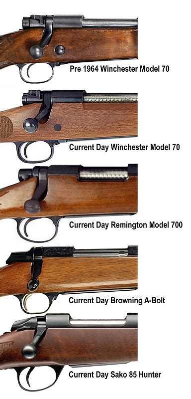 Different Kinds Of Bolt Action Rifles