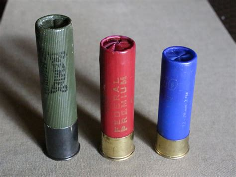 Different Shotgun Ammo