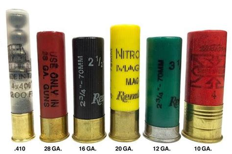Different Shotgun Shells