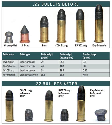 Different Types Of 22 Rifle Ammo