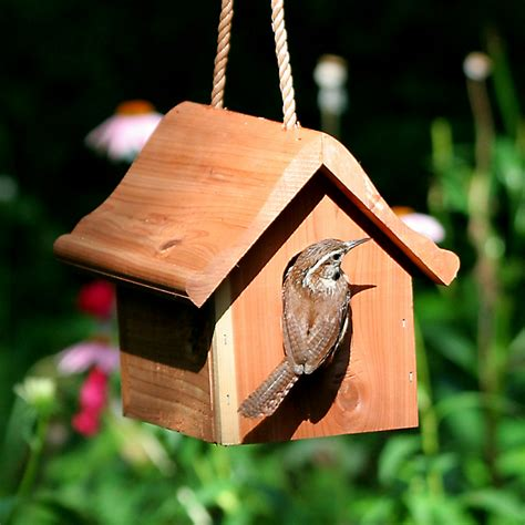 Different types of bird houses Image