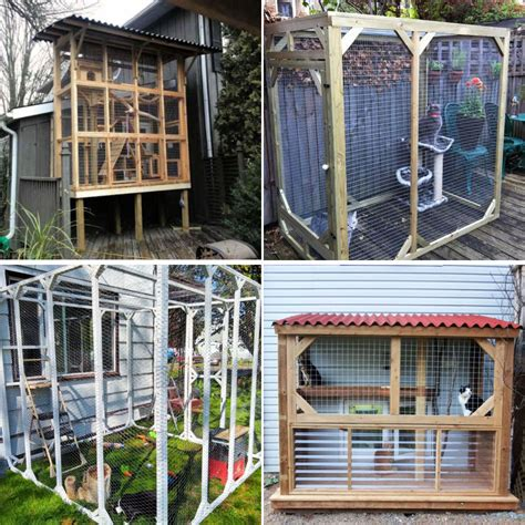 Diy cat enclosure plans Image