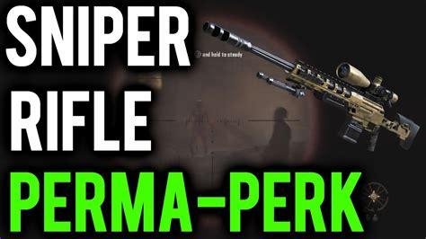 Does Rifleman Perk Effect Sniper Rifles
