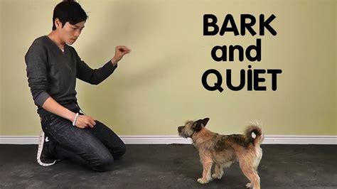 Dog Barking Training Classes