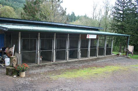 dog boarding training oregon Image