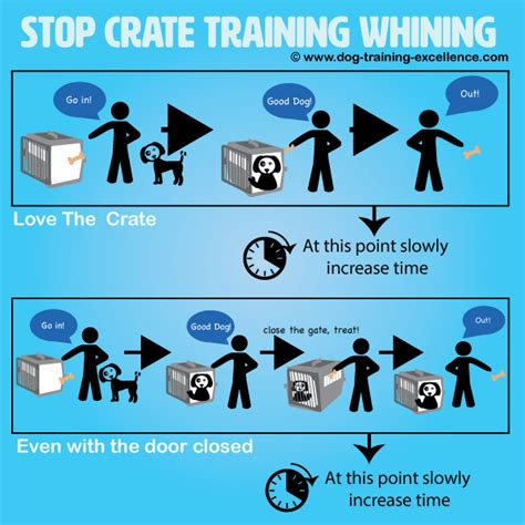 dog crate training whining.aspx Image