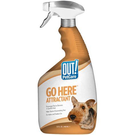 dog spray for potty training.aspx Image