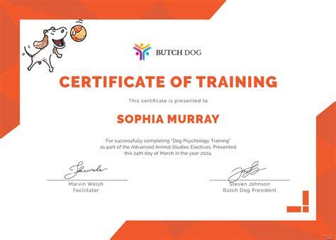 dog training awards Image