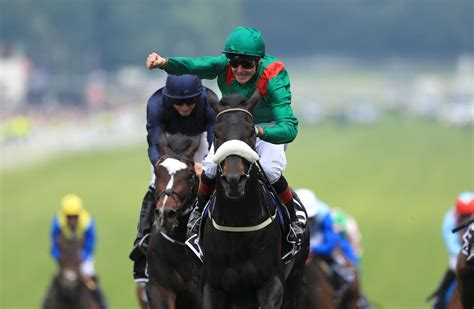 dog training epsom downs Image