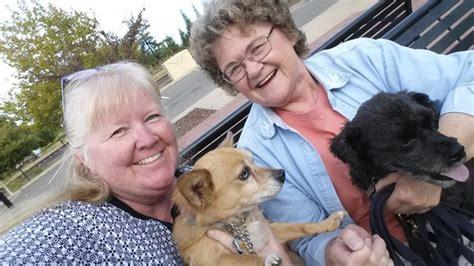 dog training loomis ca.aspx Image