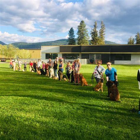 dog training vernon bc Image