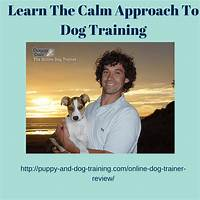 Cheap doggy dans online dog trainer: video membership from top dog trainer