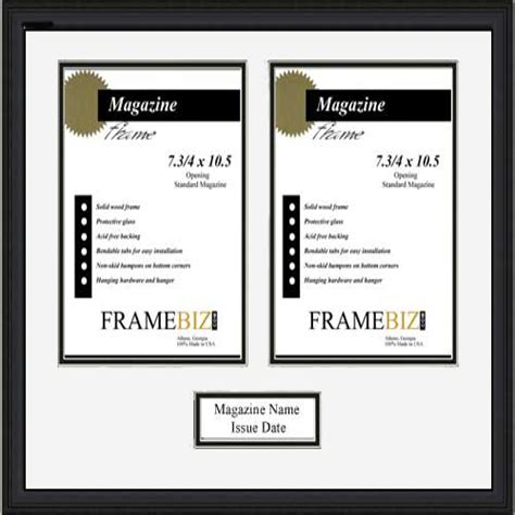 Double Magazine Frame