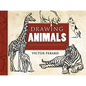 Drawing animals ebook offer