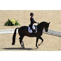 Dressage schooling music for horse riders guides