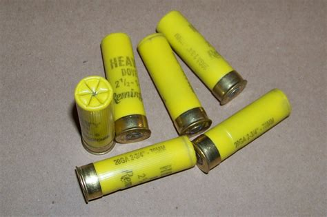 Dummy Shotgun Shells 20 Gauge