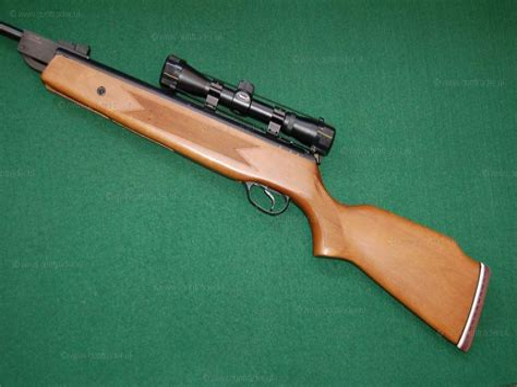 Edgar Brothers Model 30 Air Rifle