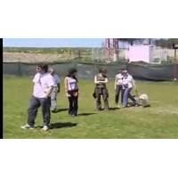 Educanino universidad virtual para perros y humanos secret