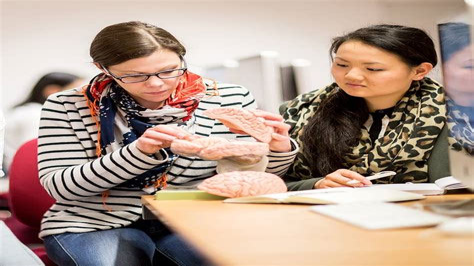 Educational Psychology Essex University