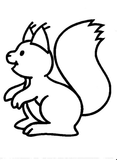 Eichhörnchen Malvorlage Einfach