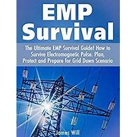 Emp, electromagnetic pulse survival guide experience