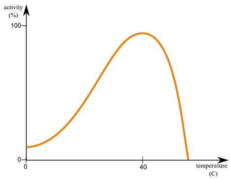 Enzyme Activity Graph Graph and Velocity Download Free Graph and Velocity [gmss941.online]