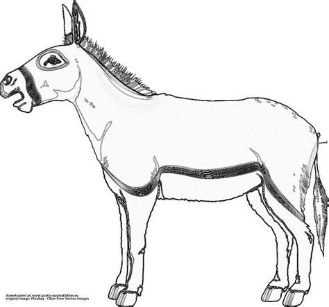 Esel Malvorlage