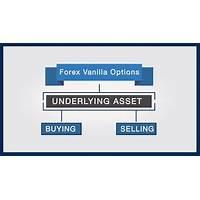 Estrategia profesional vaanye forex y opciones vanilla secret code