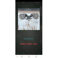 Fight sleep apnea, naked: no gear needed specials