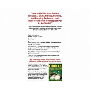 Find out about ferrets by small animal expert colin patterson online tutorial
