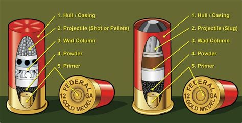 Five Parts Of A Shotgun Shell