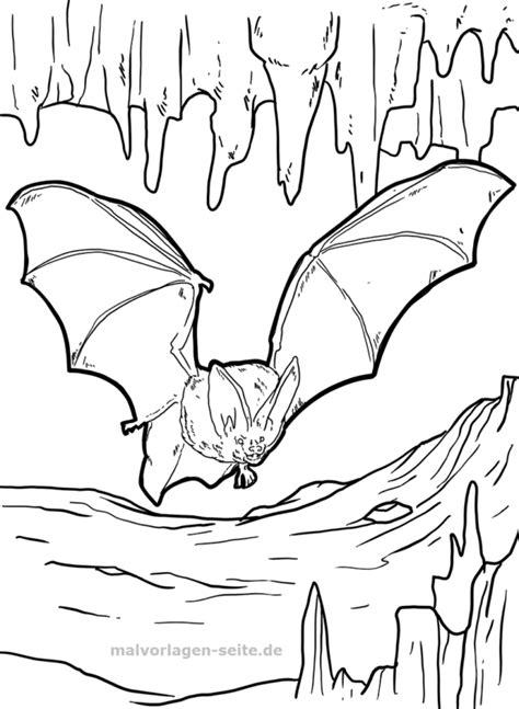 Fledermaus Malvorlagen Quest