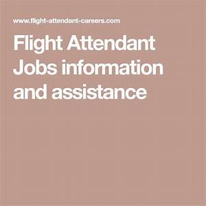 Guide to flight attendant jobs information and assistance