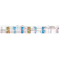 Football betting tips accumulators fbta promotional code
