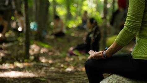 Forest Mindfulness Meditation