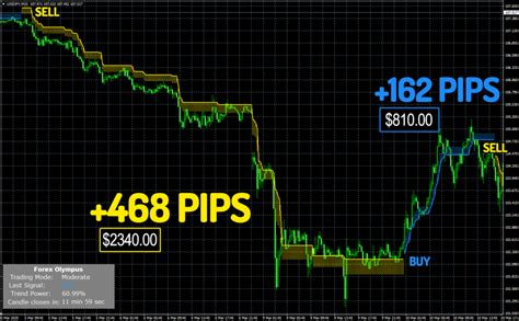 Forex Trading Signal Software Download