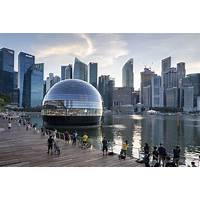 Forex sg coupon code