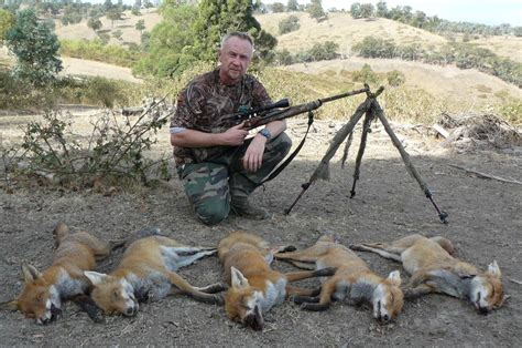 Fox Hunting Rifle Australia
