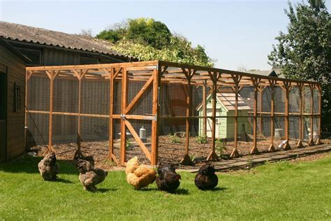 Fox proof free range chicken coop Image